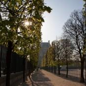 Exploring the Luxurious Gardens of Paris