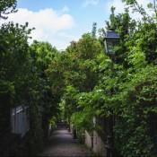 A Photo Walk Through Hidden Corners of Paris: La Mouzaïa