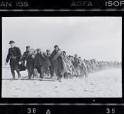 Exhibit: Robert Capa's